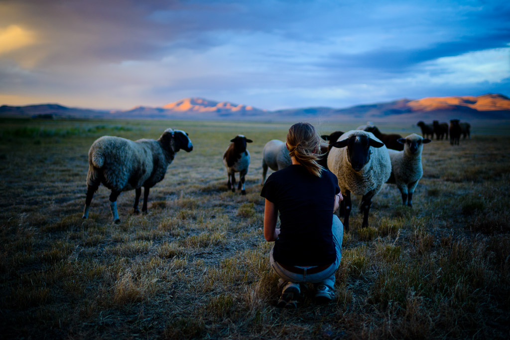 Carsten Bockermann Photography Blog Sustainable Farming